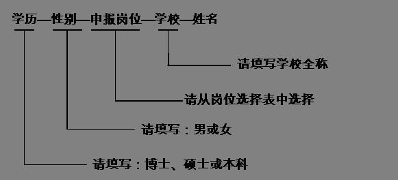 36v航天电动车电路图