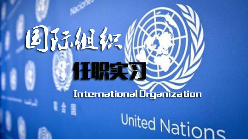 国际组织实习任职信息汇总
